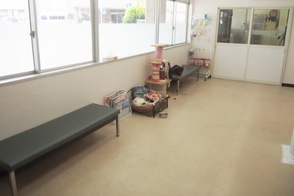 本間獣医科医院 静岡南病院