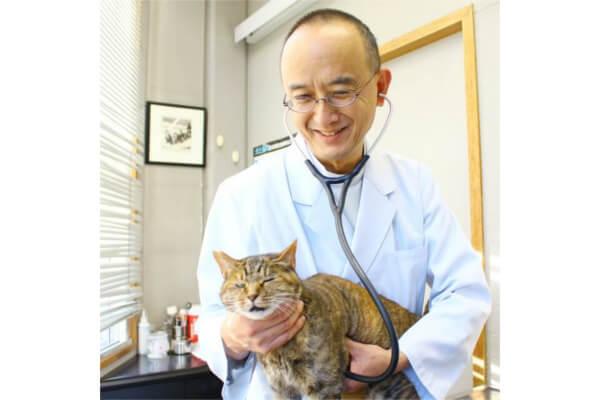 佐々木動物病院の先生