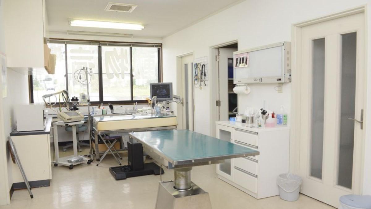 安藤動物病院