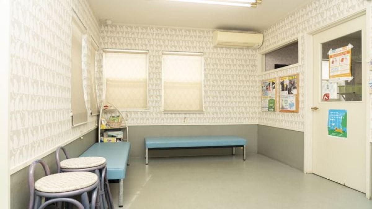 男山動物病院