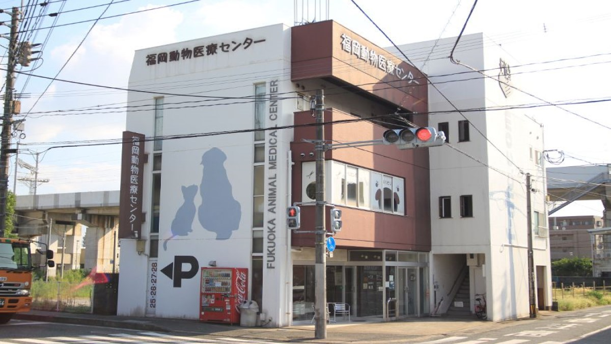 福岡動物医療センター