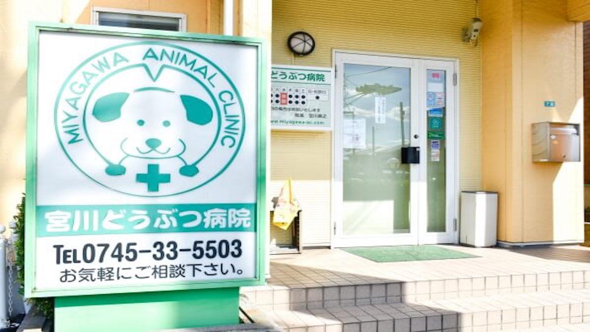 宮川どうぶつ病院