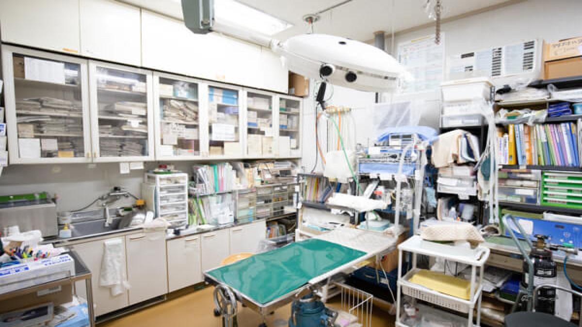 渡辺動物病院
