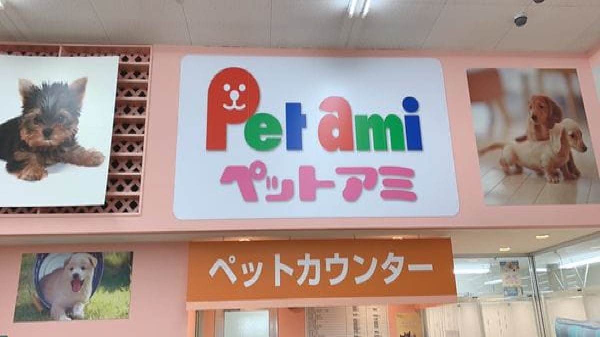 ペットアミ津幡店(ホテル)