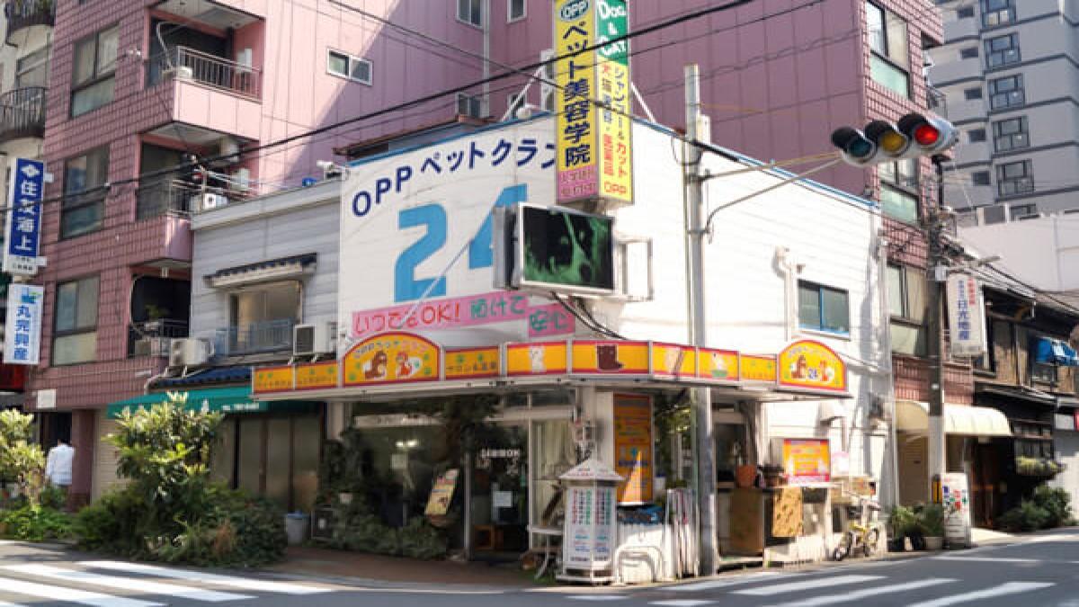 OPPペットクラブ24(ホテル)