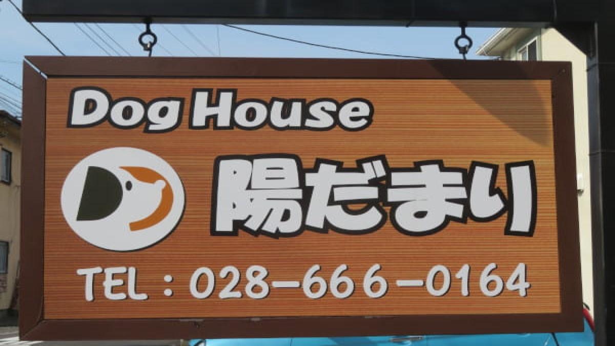 Dog House 陽だまり(ホテル)