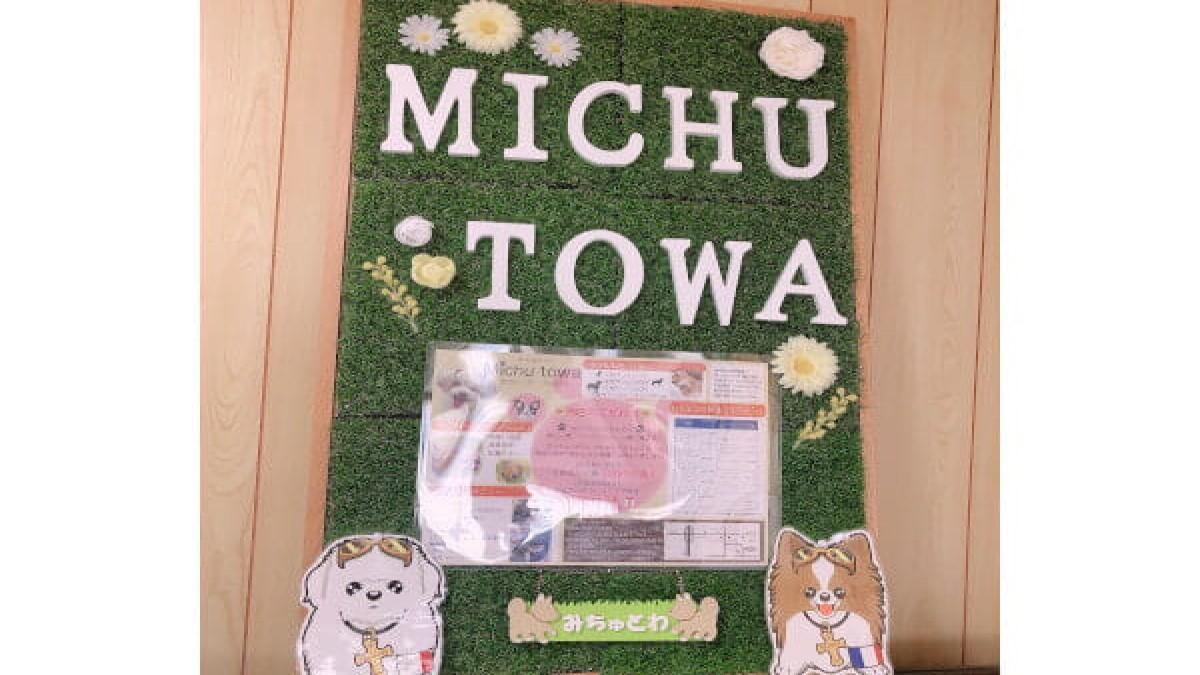 Michutowa~犬のトリミング&ホテル~(ホテル)