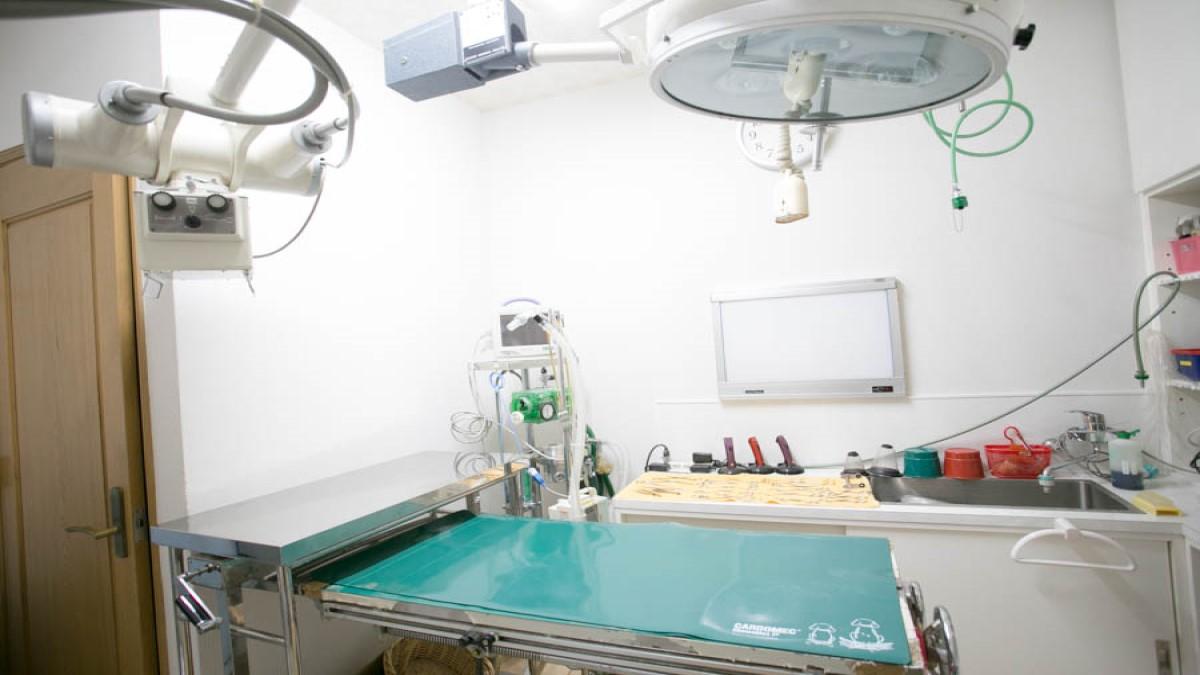 新宿犬猫病院