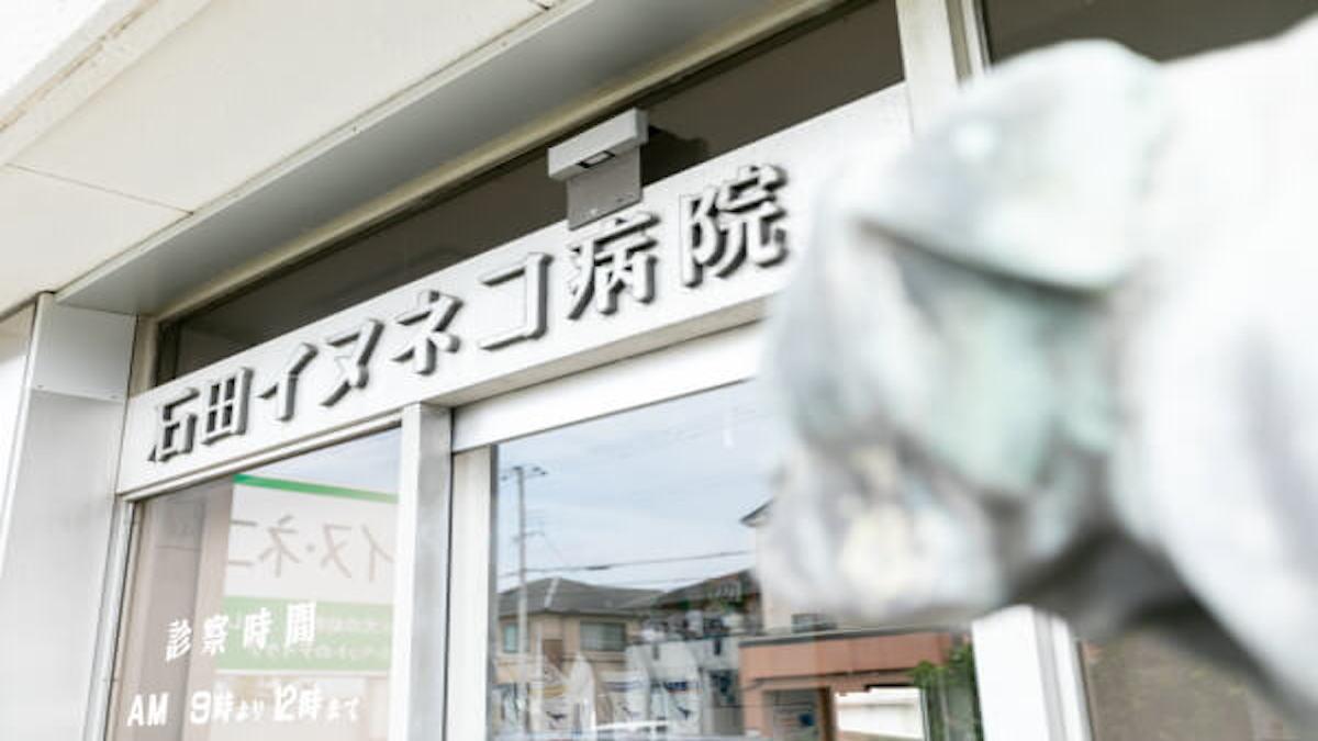 石田イヌネコ病院(ホテル)
