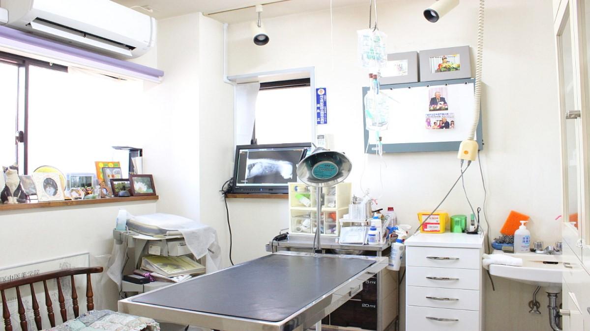 せじま動物病院(ホテル)