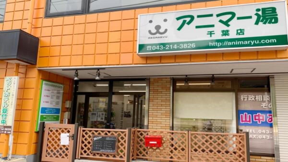 ペット温泉アニマー湯千葉店