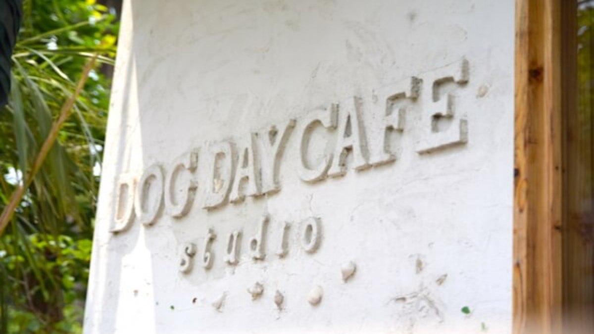 Dog Days トリミング&ホテル