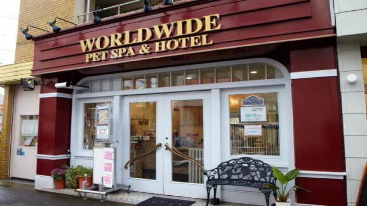 WORLD WIDE PET SPA&HOTEL