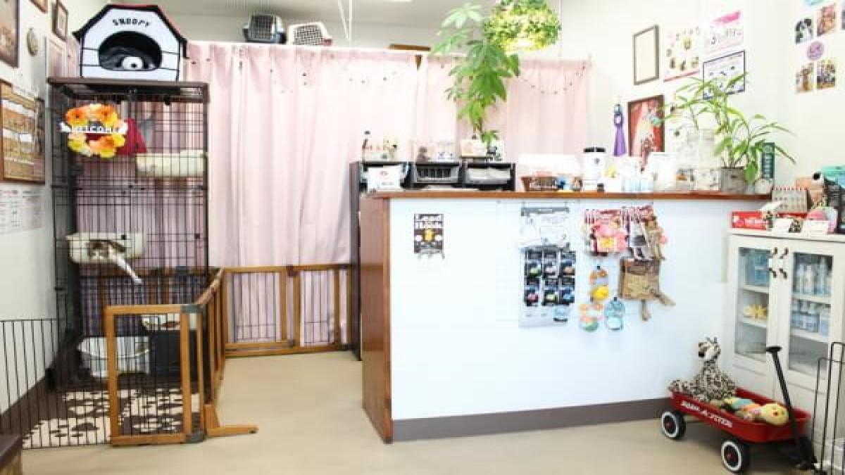 pet grooming & hotel KotaKuna base(ホテル)