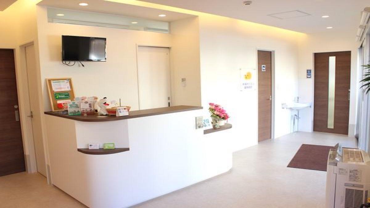 木場きたむら動物病院(ホテル)