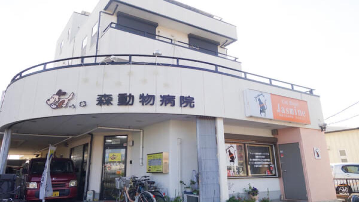 森動物病院(ホテル)