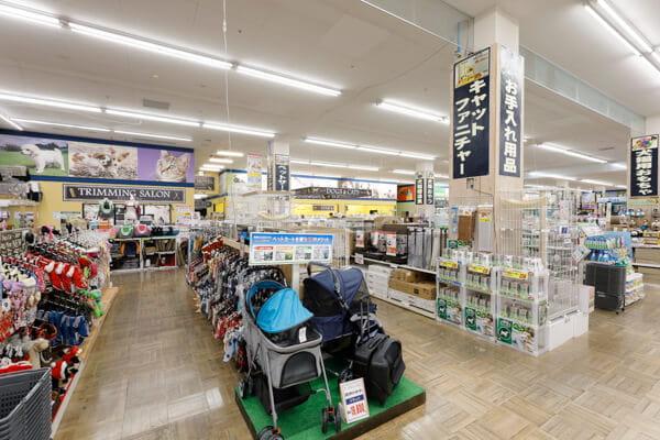 スーパーセンタームサシ新潟店(ホテル)