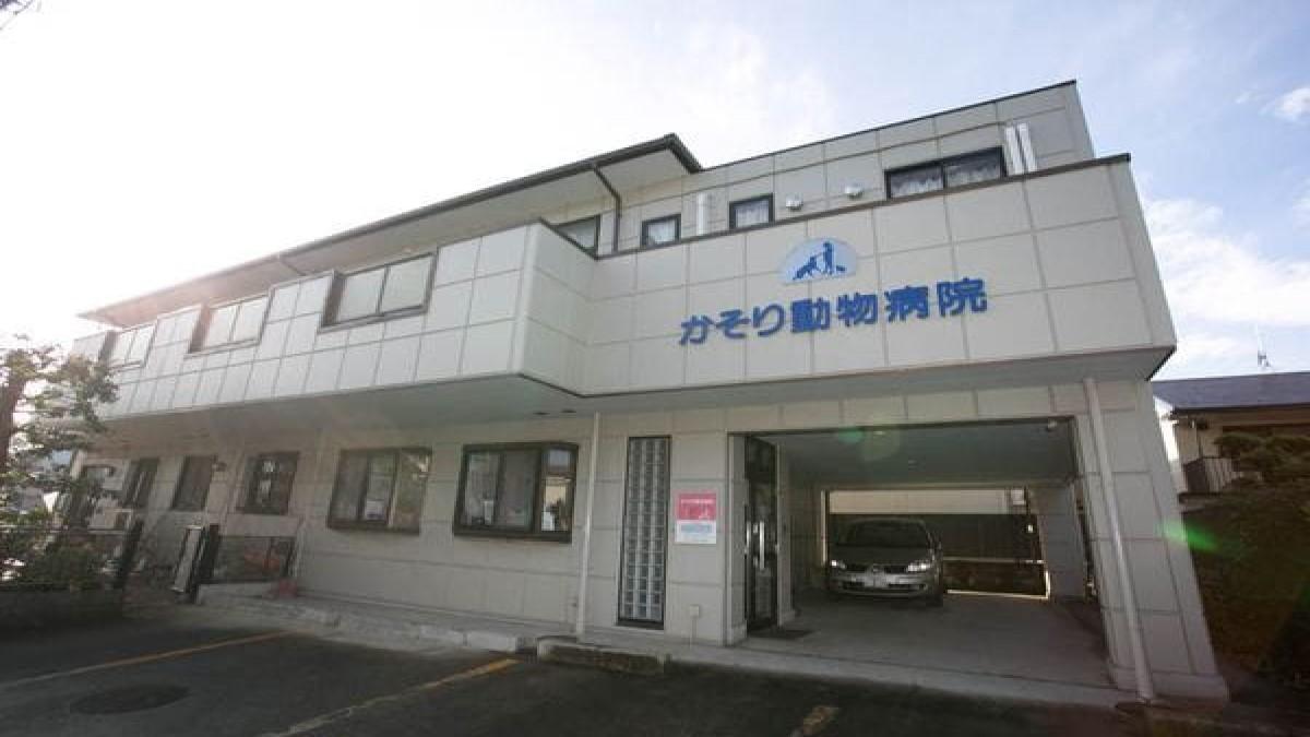 かそり動物病院(ペットホテル)