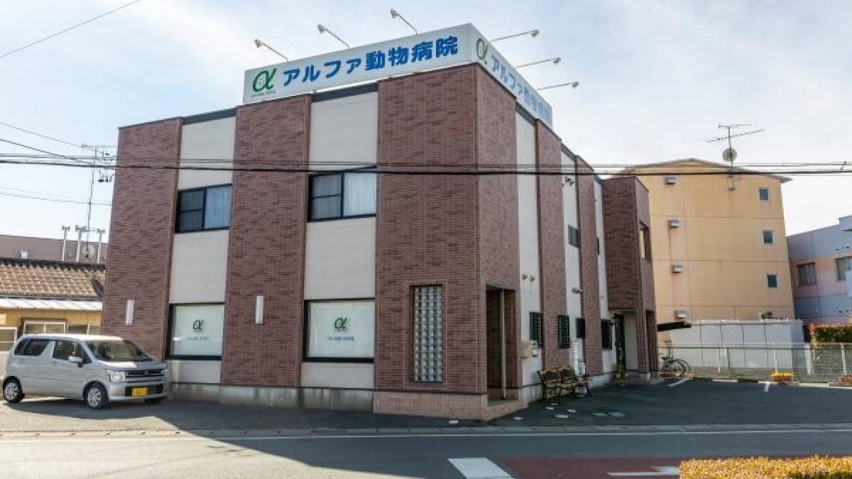 アルファ動物病院(ホテル)