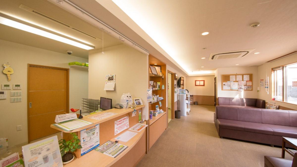 パーク動物医療センター(ホテル)