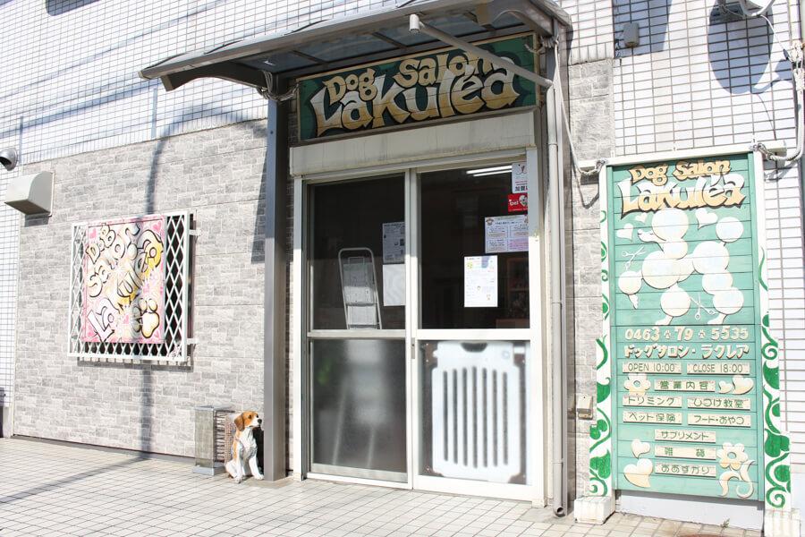 Dog salon La kule'aスタッフ写真
