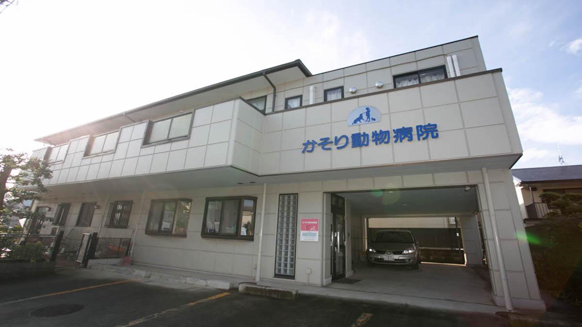 かそり動物病院(トリミング)