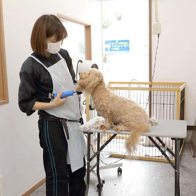 Dog Note外観写真