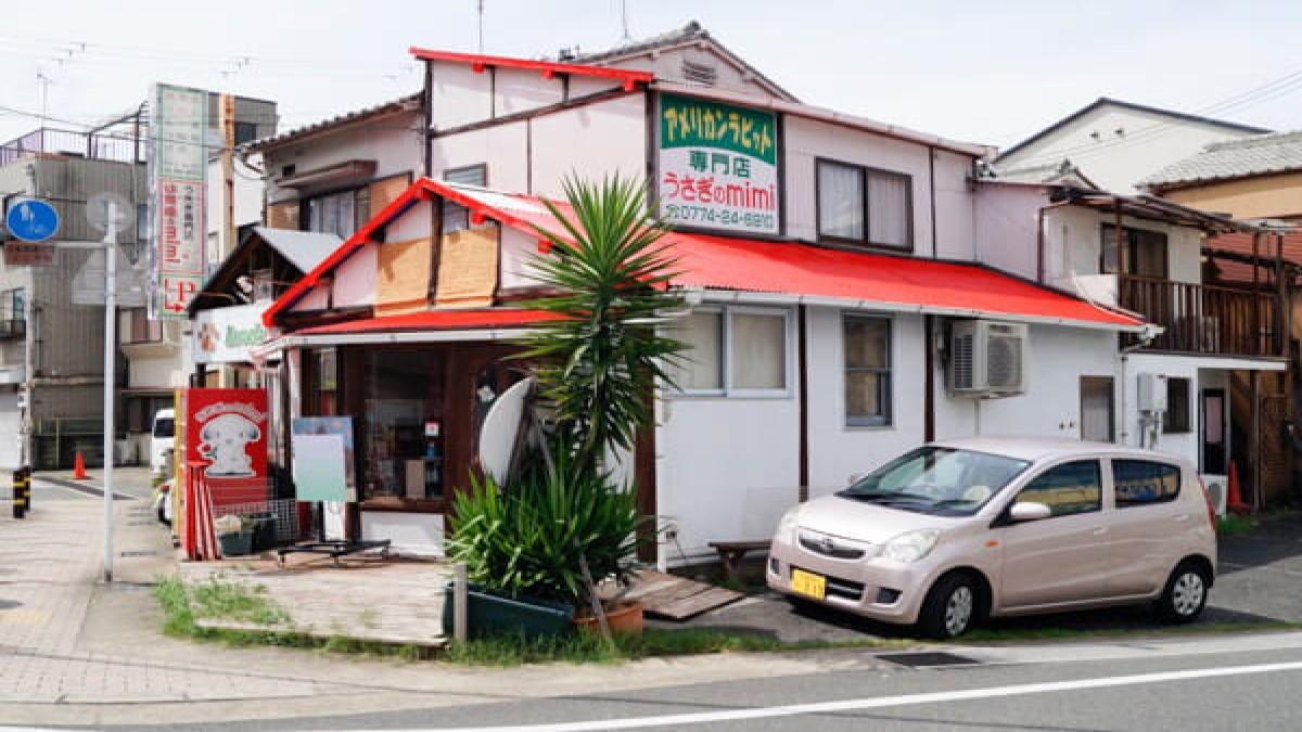 うさぎのmimi(ホテル)