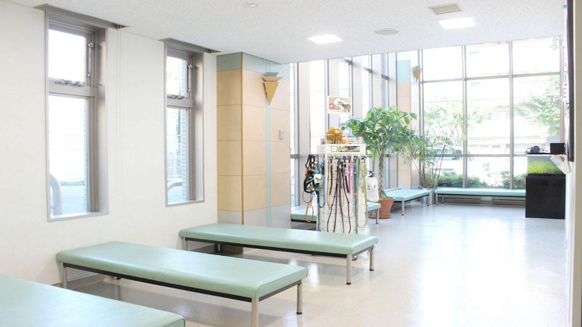 保田動物病院(ペットホテル)