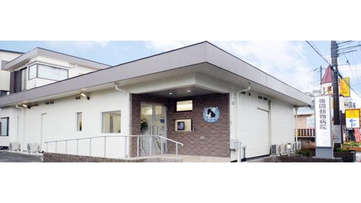 勝間動物病院(ホテル)