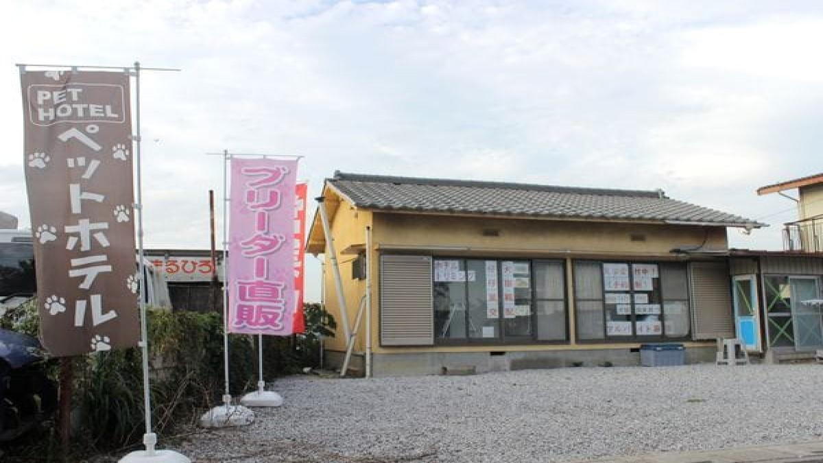 犬猫倶楽部 ウィズ 上尾店(ホテル)