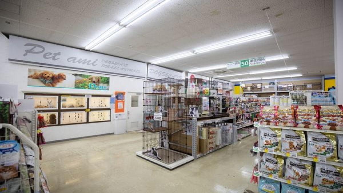 ペットパーク黒崎店(ホテル)