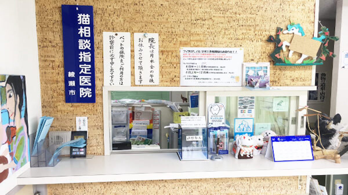 中島動物病院