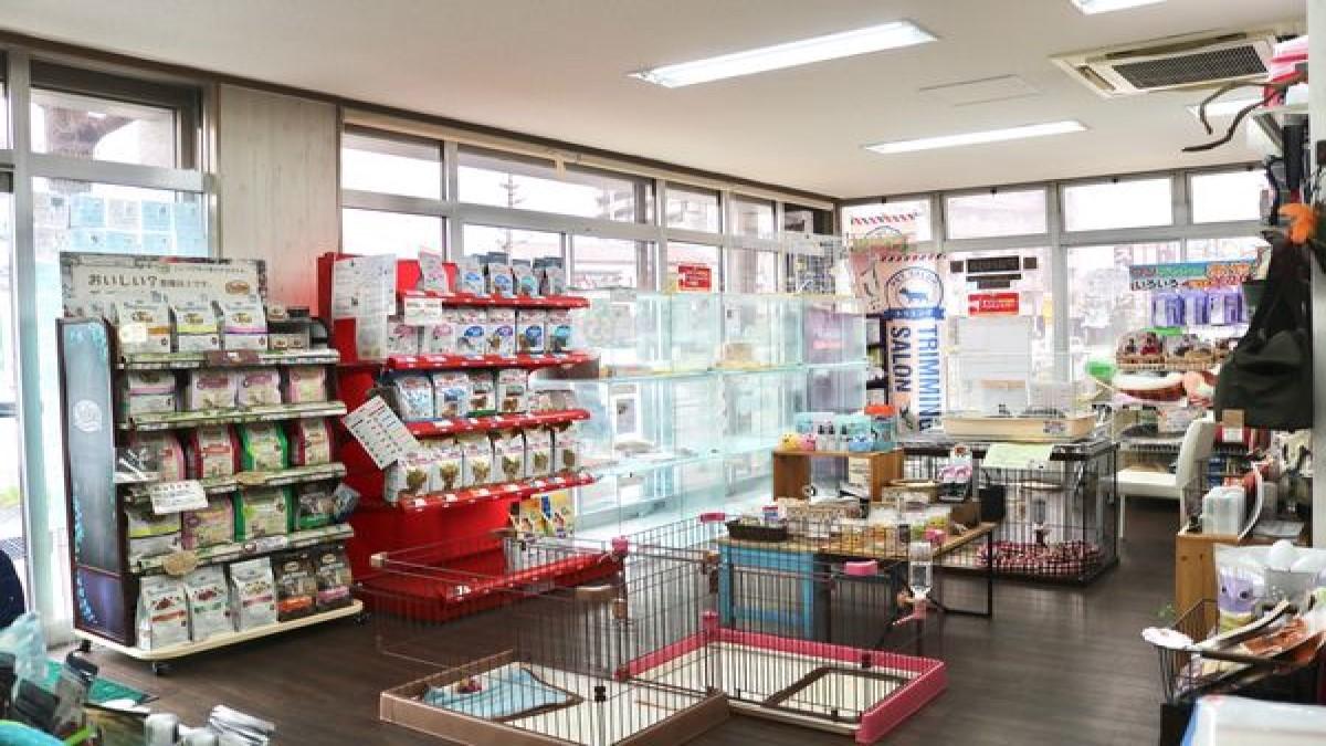 Pet's Salon パレハ