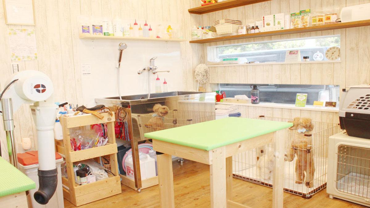 toaru dog salon とあるドッグサロン