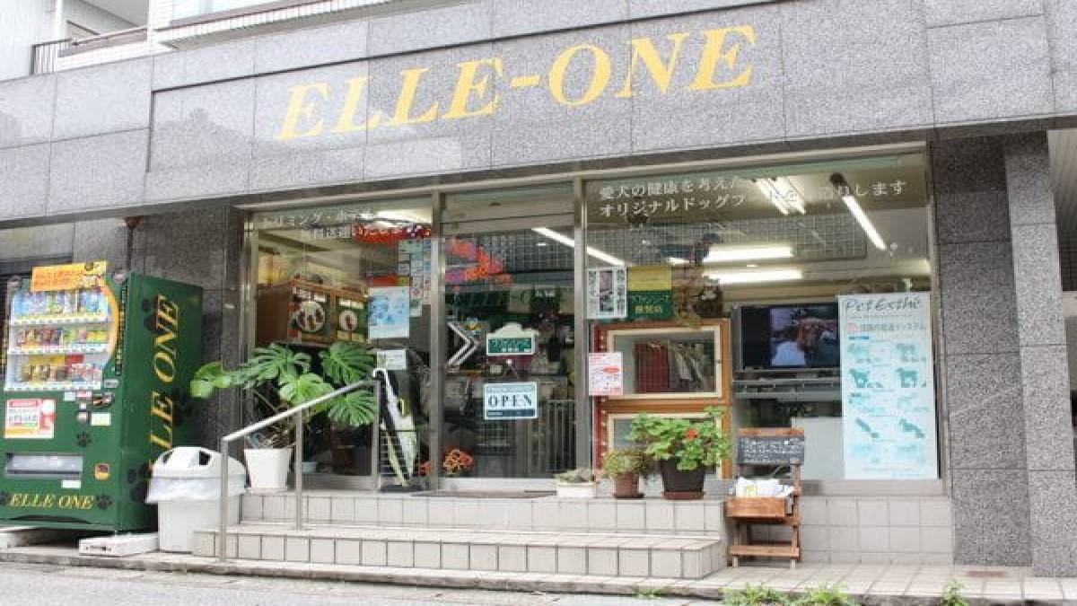 ELLE-ONE 南行徳店