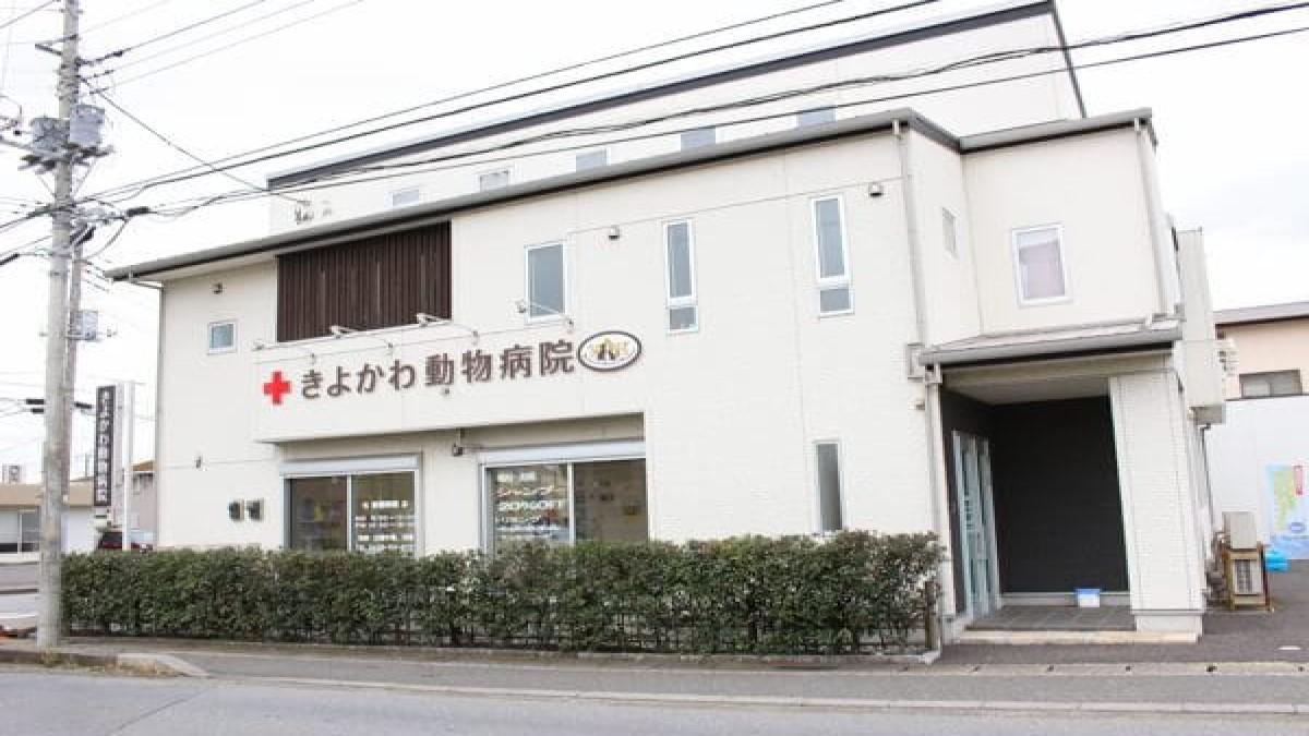 きよかわ動物病院(トリミング)