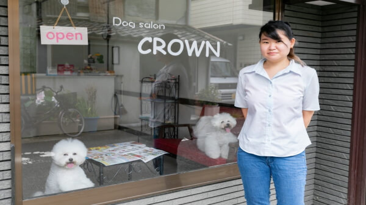 Dog salon CROWN
