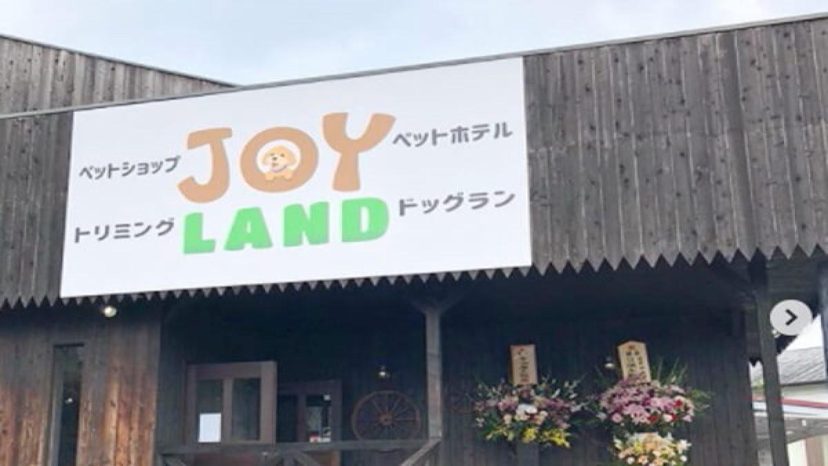 JOY LAND