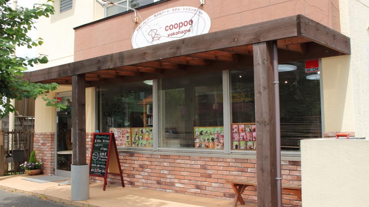 coopoo(クープー)横浜