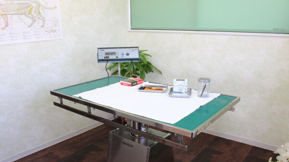 厚木キジュ動物病院