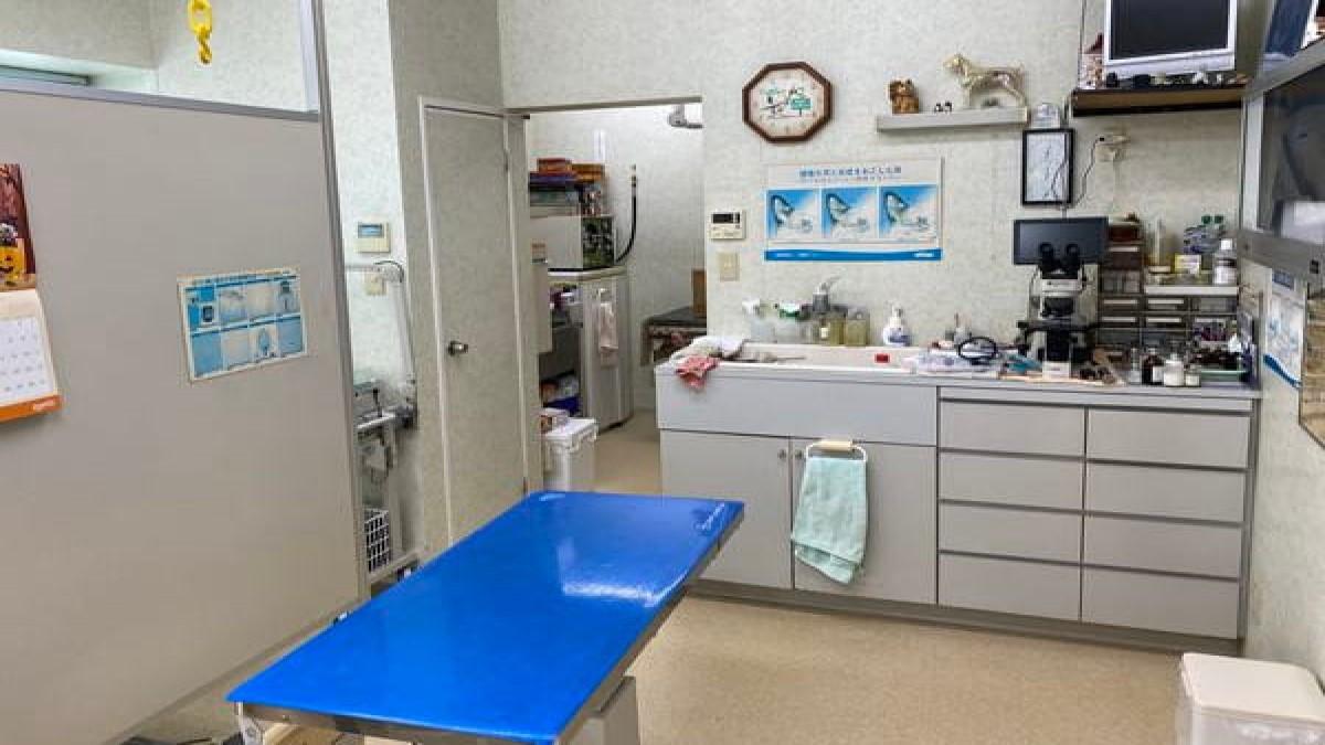 小鷹野どうぶつ病院