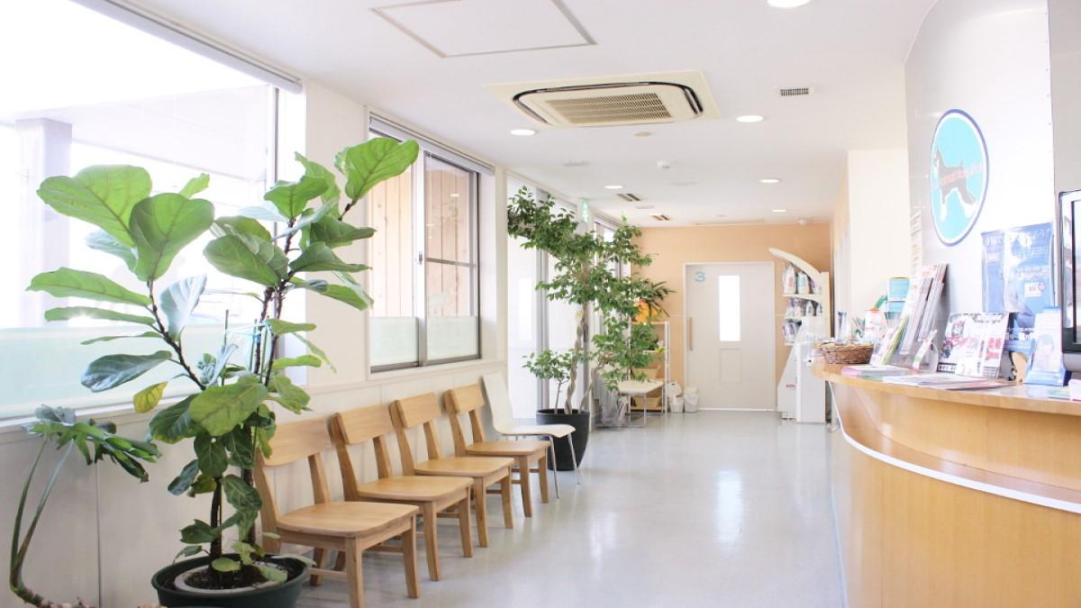 あおき動物病院