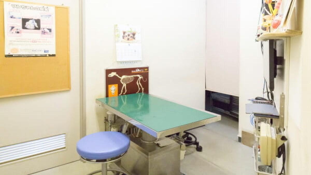 オシバ動物病院