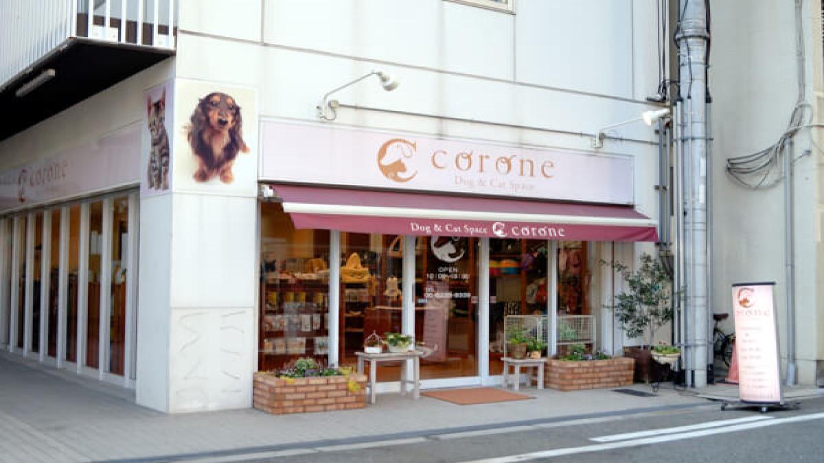 Dog&Cat Space Corone