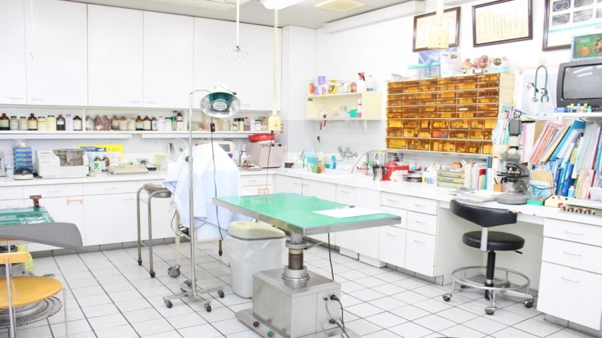 会亀動物病院