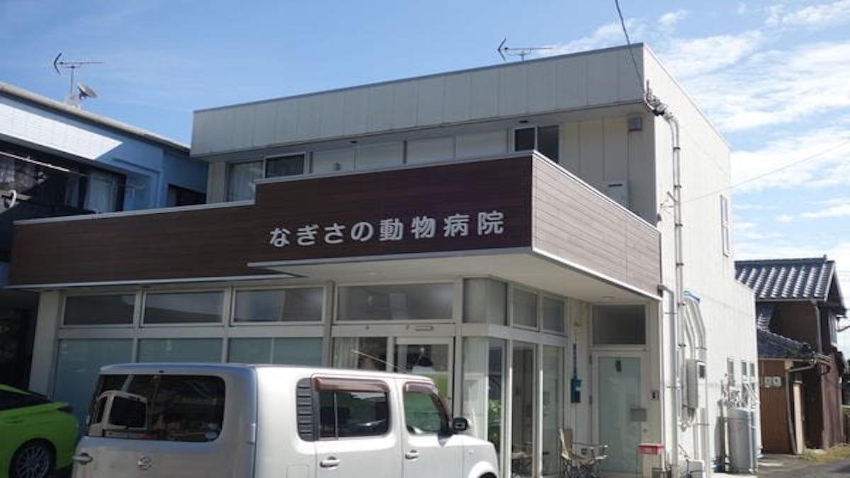 なぎさの動物病院(トリミング)
