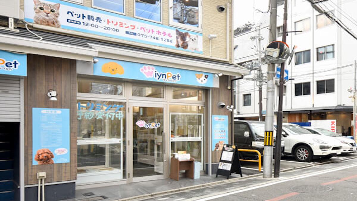 WIYNペット 京都祇園店