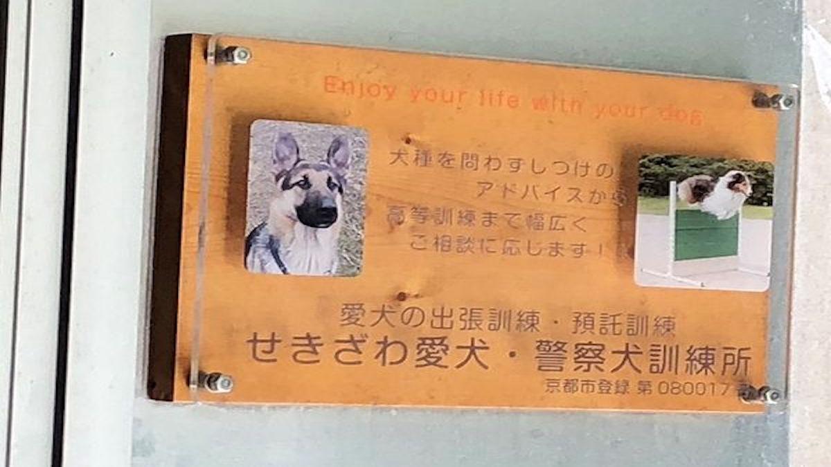 せきざわ愛犬・警察犬訓練所