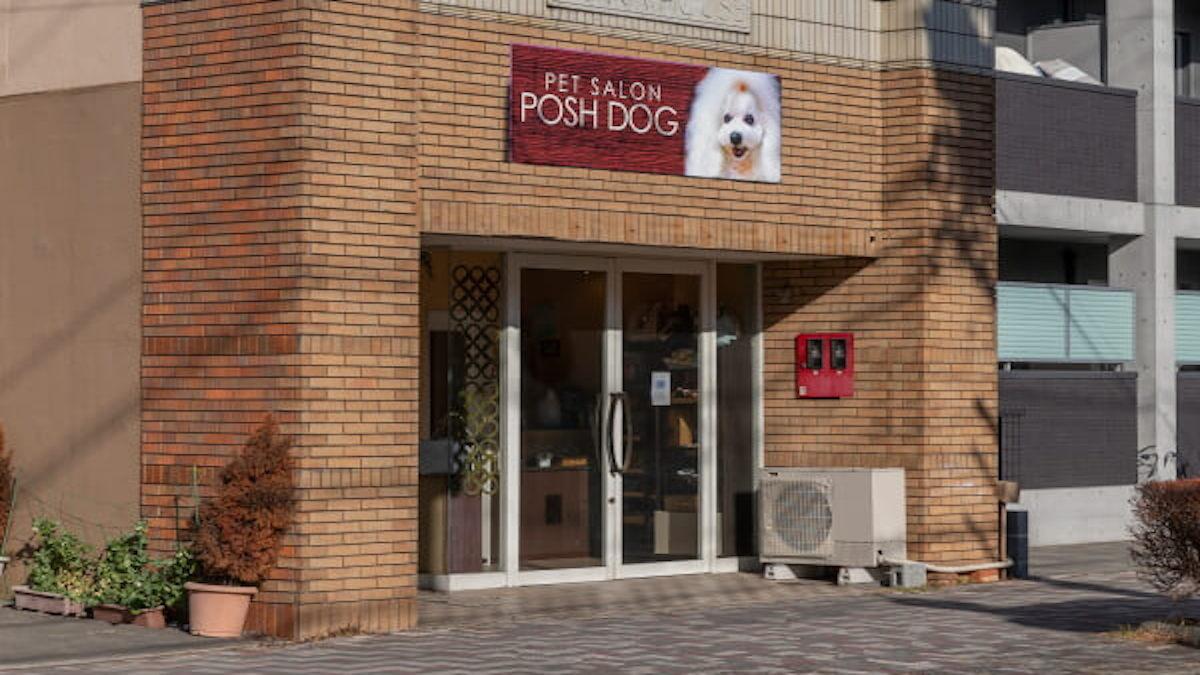PETSALON POSH DOG